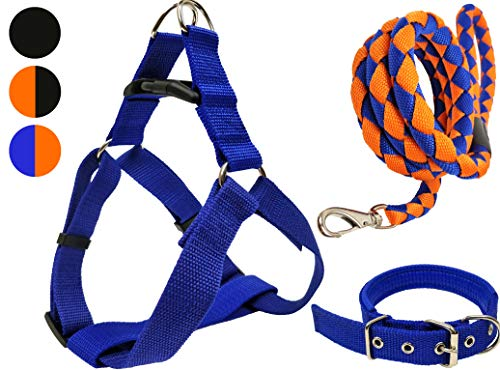 Ayton Durable Cross Weaved Nylon Dog Leash - 5 FT 360° Swivel, Set of 3 with Harness and Collar for Medium and Large Dogs (Sets Small And Dog Lead Collar)