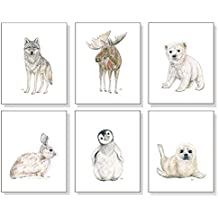 Arctic Nursery Art Prints Set of 6, Baby Animal Watercolors, Childrens Room Wall Decor, Polar Bear Penguin Seal Wolf Moose Bunny
