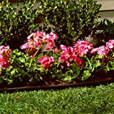 SUNCAST Lawn Edging, 60-Feet, Black