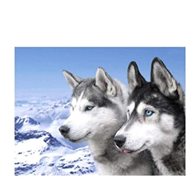 ZAQXSW Dog Jigsaw Puzzles for Adults 1000 Piece Animal Husky Wolves Wooden Assembling Decoration for The Home Toy Game Gift Educational Toy for Kids and Adults: Home & Kitchen [5Bkhe0306410]