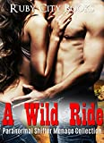 Bargain eBook - A Wild Ride
