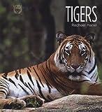 Tigers, Rachael Hanel, 1583416609