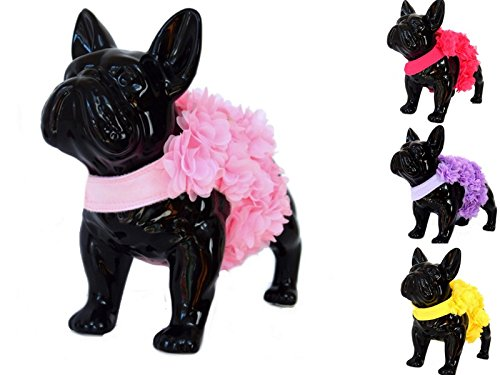 Floral Pink, Purple or Yellow Dog Harness and Leash Set for XSmall and  Small Breeds Very Stylish and Cute (L, Light Pink)]()
