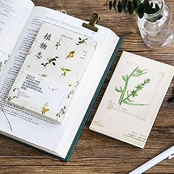 Amazon Com 30 Pcs Lot Plant Set Series Postcard Natural Plant