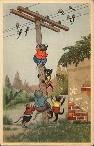 Cats Climbing Telephone Pole Dressed Animals Original Vintage Postcard from CardCow Vintage Postcards