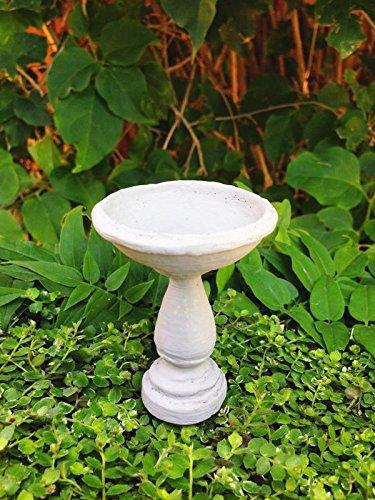Amazon.com: My jardines de hadas en miniatura – estilo ...