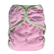 EcoAble Baby Day & Night All-In-One AIO Cloth Diaper w/ Reversible 2-in-1 Insert & Dual Pocket, Size 10-35Lb (Light Pink)