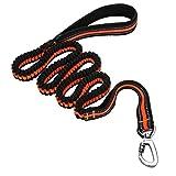 Dog Leash, Itery Reflective Training Bungee Leash Elastic Dog Pet Lead Leash with Control Handle (Orange)
