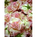 12-BIG-Cream-Light-Pink-Edge-Silk-Roses-Flower-Head-375-Artificial-Flowers-Heads-Fabric-Floral-Supplies-Wholesale-Lot-for-Wedding-Flowers-Accessories-Make-Bridal-Hair-Clips-Headbands-Dress