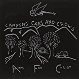 Canyons Cars & Crows by Amps For Christ