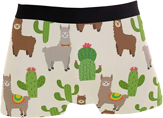 Soft Breathable Stretch Low Rise Trunks Briefs Underwear for Men Boys Kawaii Llama Cactus Mens Boxer Briefs