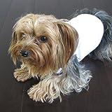 Cool White Dog Shirt Small, My Pet Supplies