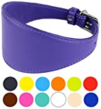 """CollarDirect Whippet Dog Collar, Leather Greyhound Collars, Leather Dog Collar Lurcher Saluki Soft Padded Small Medium Large Black Blue Red Brown Pink Navy Green (Neck Fit 11""""-14"""", Purple)"""