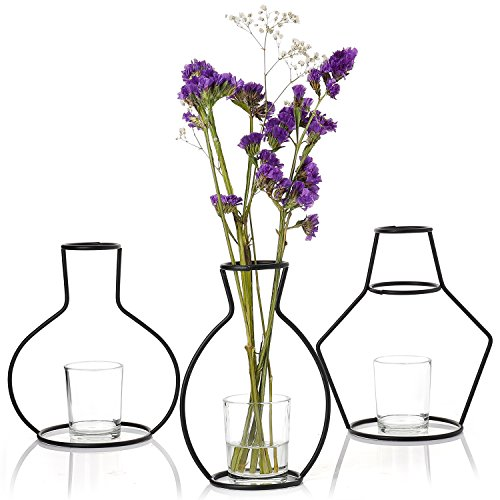 Greenaholics Decorative Vases - Unique Iron Vase, Creative Geometry Shapes with 3 Glass Cups, Set of (Three Vases)