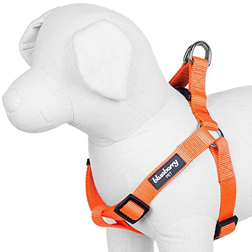 Blueberry Pet 19 Colors Step-in Classic Dog Harness, Chest Girth 16.5 - 21.5, Florence Orange, Small, Adjustable Harnesses for Dogs