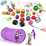 Cat Toys Interactive Kitten Toys 25PCS Assortments,Variety Pack of Catnip Toy, Kitten Feather Wand,Cat Tunnel, Bell Crinkle Balls, Cat Teaser Toy and Spring, Cat Kitty Toys