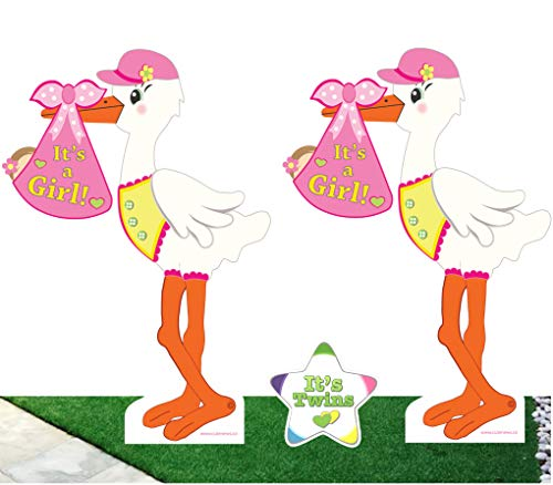 Cute News Twin Girls Yard Stork Signs with It's Twins Star S