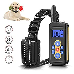 Mailink Remote Dog Training Collar Rechargeable waterproof IPX6 1000ft Remote Range with Beep/Vibration/Shock, 0~99 Shock Levels Dog Training Training Collar for Small Medium Large Dogs with LED Light