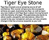Auras by Osiris - Tiger Eye Beaded Necklace For Men