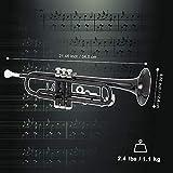 GLARRY Standard Trumpet Brass Bb Trumpet for