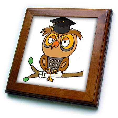 Owl Tile - 3dRose All Smiles Art Graduation - Funny Cute Owl in Graduation cap with Diploma Scroll - 8x8 Framed Tile (ft_281433_1)