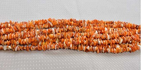 Spiny Oyster Shell Orange Genuine Sea of Cortez Chips 5-7 MM Beads 16