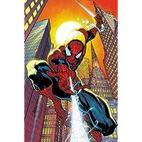 Amazing Spider-Man by J. Michael Straczynski Omnibus Vol. 1