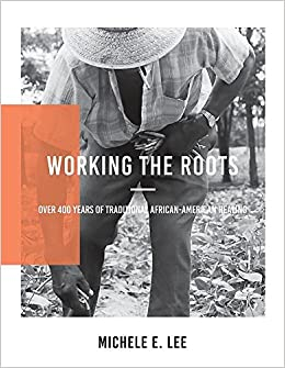 Working The Roots: Over 400 Years of Traditional African American Healing:  Lee, Michele Elizabeth: 9780692857878: Amazon.com: Books