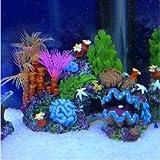 Generic NV 1001005470_ _ _ _ _ _ _ _ yc-uk214cmora Grotte pour poisson ventouse monté Grotte décoration aquarium ation récif de corail rium Aquarium 14cm ventouse