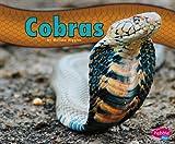 Cobras, Melissa Higgins, 1476520704