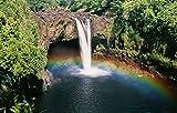 "Rainbow Under The Waterfall Hawaii Art Poster 21"" X 13"""