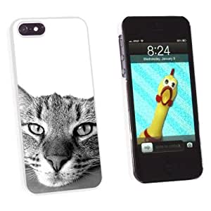 phone covers Graphics and More Domestic Shorthair Tabby Cat - Snap-On Hard Protective Case for Apple iPhone 5c - Non-Retail Packaging - White