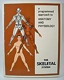 The Skeletal System, Brady, Robert J., and Company Staff, 0876180330