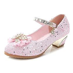 Low Heels Princess Dress Shoes