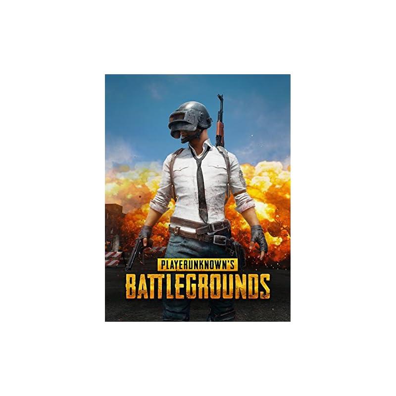 playerunknown-s-battlegrounds-online