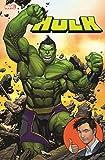 Hulk: Bd. 1 (2. Serie): Der total geniale Hulk