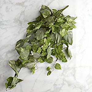Factory Direct Craft Cascading Artificial Variegated Pothos Ivy Bush for Home Decor, and Displaying 111