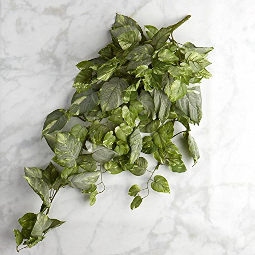 Factory Direct Craft Cascading Artificial Variegated Pothos Ivy Bush for Home Decor, and Displaying