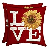 16'' Patio Square Toss Decorative Pillow (Set of 2, Love Red Sedona)