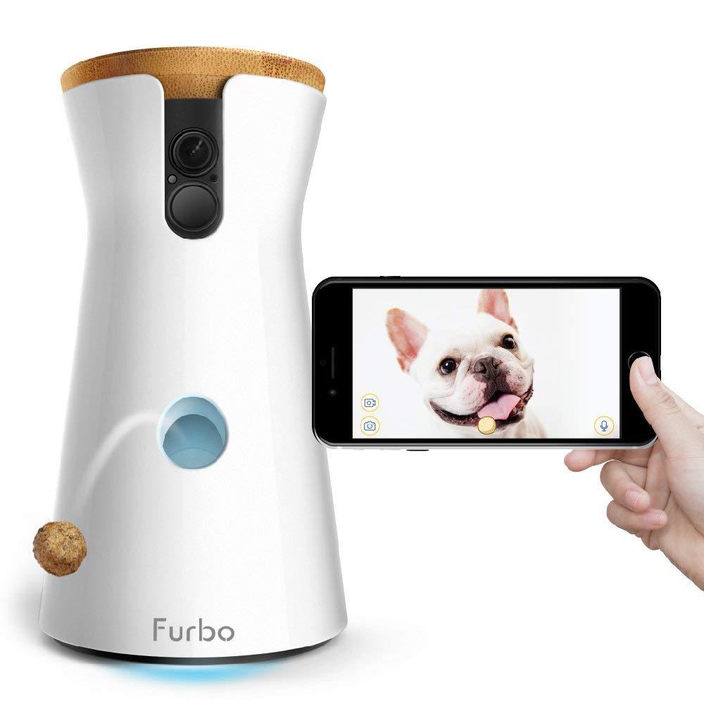 FURBO: videocamera- lancia croccantini per Welsh corgie cardigan - tuttoperiltuocane.it