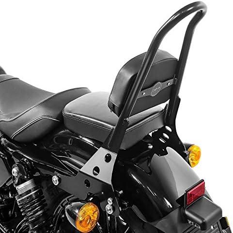 Sissy Bar Abnehmbar Csm Für Harley Sportster Forty Eight 48 Special 18 20 Schw Auto