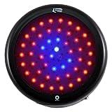 Lighthouse Hydro BlackStar Flowering LED Grow Light, 100-watt Review