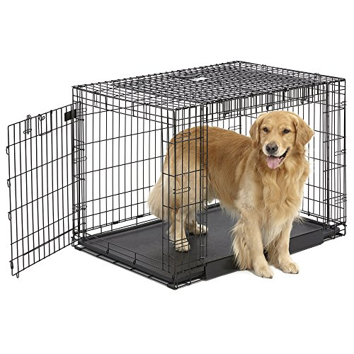 MidWest Homes for Pets Ovation Double Door Dog Crate, 42-Inch by MidWest Homes for Pets