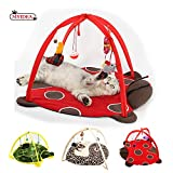 Cat Tent with Hanging Toys - Balls Mice & More Helps Cats Get Exercise and Stay Active, Best Cat Bed Tent Kitten Mat Pet Supplies (Lady Beetle)