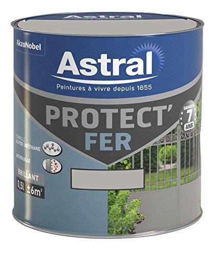 ASTRAL 5120649 Protect'fer 0, 5 L Brillant Origanum AkzoNobel AS5120649