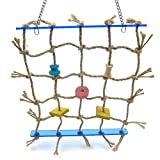 Alfie Pet by Petoga Couture - Kaelin Hanging Rope Ladder Toy for Birds