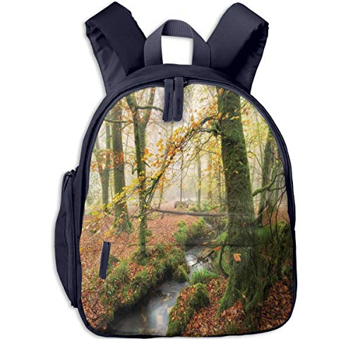 Kids School Backpack for Boys and Girls,Misty Autumn Woodland And Stream At Golitha Falls On Bodmin Moor In Cornwall,Kindergarten Preschool Bag,navy