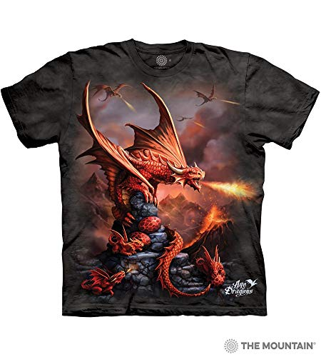 The Mountain Fire Dragon Adult T-Shirt, Grey, Small