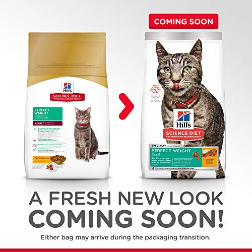 Buy cat food for adult cats