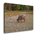 Ashley Canvas, View Of The Buffalo Is In The Farm, Home Decoration Office, Ready to Hang, 20x25, AG6345520